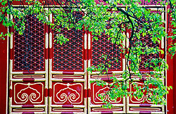 China, Beijing, 2007. Spring brings out the best colors at a well-maintained Buddhist temple in Beijing..