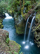 "Two pretty waterfalls along the North Umpqua River, on the half-mile trail to Toketee Falls, Oregon, USA. Published by the Portland Monthly, September 2008 (""Weekend Getaways"" article). Published in ""Light Travel: Photography on the Go"" by Tom Dempsey 2009, 2010."