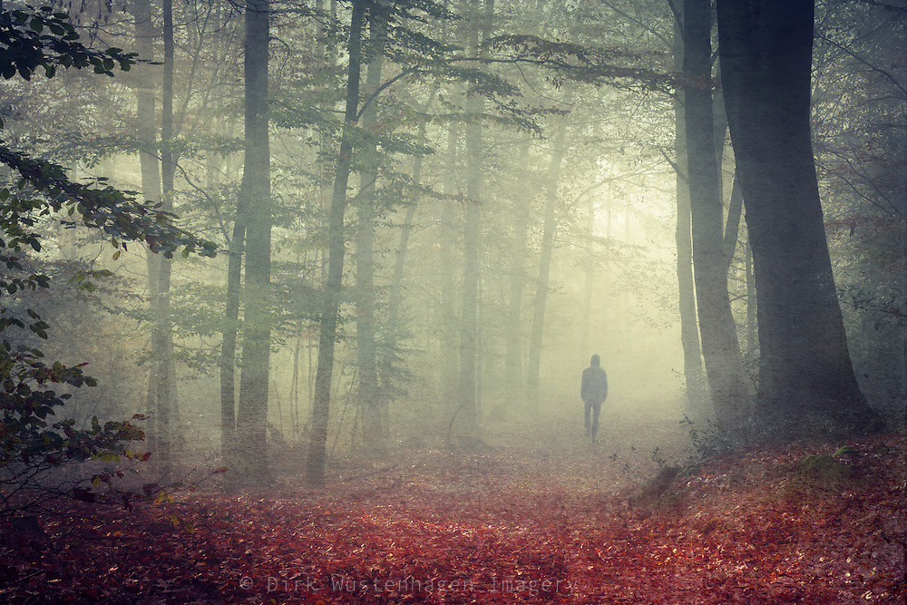 Man walking through a misty forest