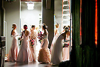 Debutantes are presented at the 2012 Camellia Ball, November 21, 2012.