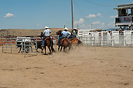 Wilsall Ranch Rodeo, Montana, Team Penning, The Inlaws and Outlaws Team, Tyler Hamm, Jaime Wood, Jessica Sarrazin
