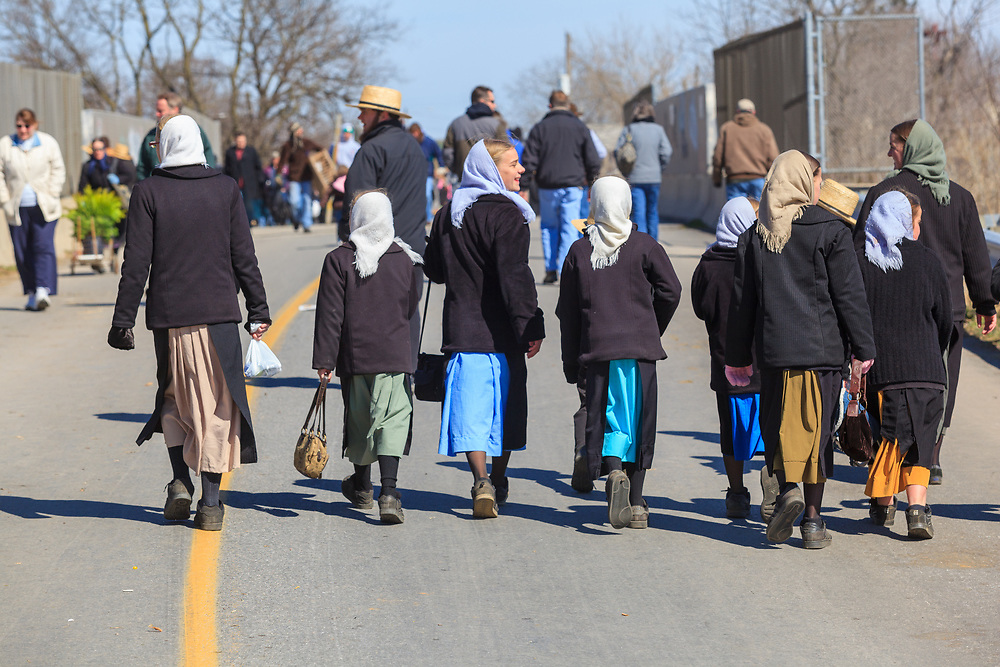 Gordonville, PA, USA - March 10, 2012: Amish women walking to the Gordovile Volunteer Fiire Company Mud Sale.