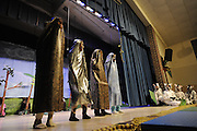 "The Sagamore Hills Elementary School spring play, ""The Zebra Who Had No Stripes,"" adapted by Deb Flanagan Calabria and co-directed by Page Cox, is performed Friday, March 1, 2013 in Atlanta.  (David Tulis/dtulis@gmail.com)"