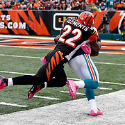 2012 Dolphins at Bengals