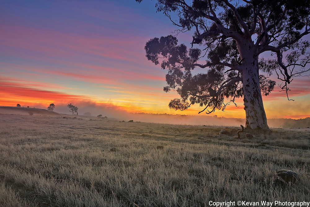 early morning in Kyneton