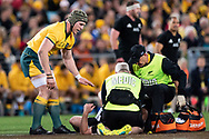 SYDNEY, NSW - AUGUST 18: Australian player David Pocock (8) checks on New Zealand player Ryan Crotty (12) at the Bledisloe Cup rugby test match between Australia and New Zealand at ANZ Stadium in Sydney on August 18, 2018. (Photo by Speed Media/Icon Sportswire)