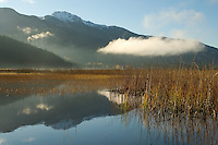 Whistler mountain rises above a misty Alta Lake, autumn in Whistler, BC Canada