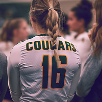 2nd year outside hitter, Brittany Rousseaux (16) of the Regina Cougars during the Women's Volleyball home game on Thu Nov 15 at Centre for Kinesiology, Health & Sport. Credit: Arthur Ward/Arthur Images