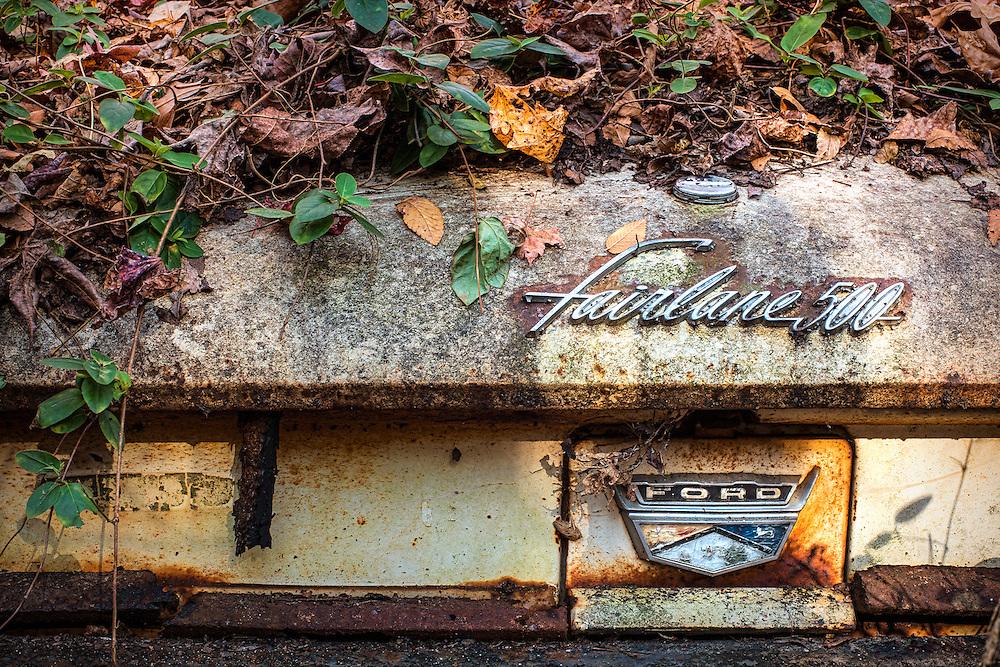 Vintage Car Graveyard 03.jpg | Walter Arnold Photography