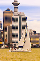 A sailboat sailing on Auckland Harbor with the Auckland skyline featuring the 328 meter high Sky Tower behind (the tallest free-standing structure in the Southern Hemisphere), Auckland, New Zealand