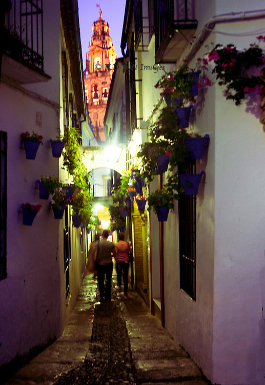 Cordoba, Callejon de las Flores at night, with cathedral spire rising above it.  A few pedestrians seen from behind walk toward the end of the alley.