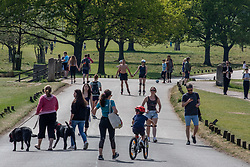 © Licensed to London News Pictures. 26/04/2020. London, UK. Members of the public go out to enjoy the warm weather in Richmond Park which looked busy today during lockdown where temperatures are expected to reach 21c. London has seen an increase in traffic and busier High Streets as more shops and cafes start to open up during the coronavirus pandemic crisis. Photo credit: Alex Lentati/LNP