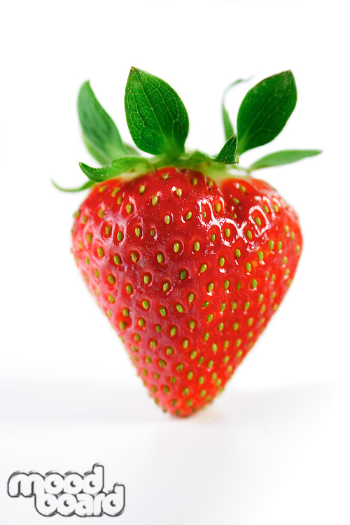 Studio shot of strawberry on white background