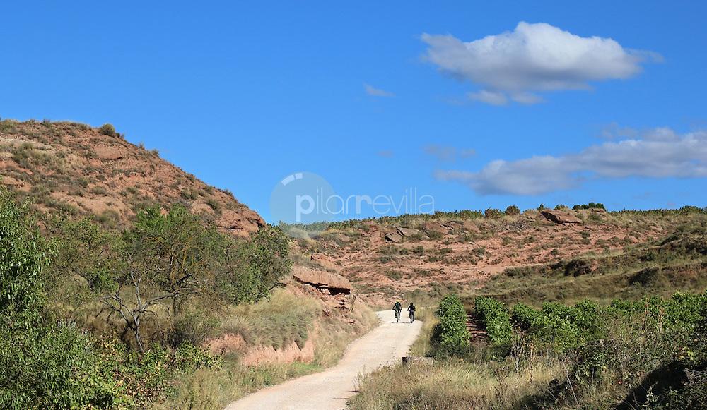 Paseo en bicicleta. La Rioja ©Daniel Acevedo / PILAR REVILLA
