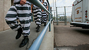 """Inmates from one of Sheriff Joe Arpaio's Maricopa prison are shackled together with 9 feet spacing between each prisoner before being put to work outside the prison. Highly controversial, the chain gangs were reintroduced by then Sheriff Joe Arpaio in 1995. Forced to wear pink underwear, black and white prison outfits and """"paraded"""" in shackles along highways and public places while doing hard labor, the chain gang was only one of many controversial punitive actions in the sheriff's bid to be tough on crimes. A staunch republican and media savvy, Joe Arpaio was reelected several times before being replaced in 2017 by Sheriff Paul Perzone."""