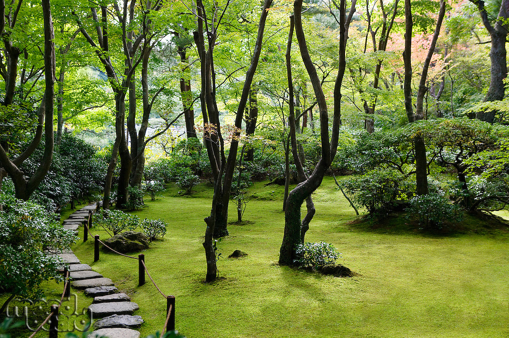Japan Kyoto Okochi Denjiro stone path in Japanese garden