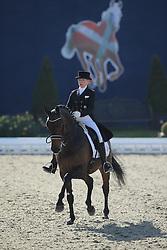 Busch-Kuffner Silvia, (GER), Sting 15<br /> Nurnberger Burg-Pokal - St George Special<br /> Horses & Dreams meets Denmark - Hagen 2016<br /> © Hippo Foto - Stefan Lafrentz