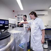 Nederland, Amsterdam, 17 oktober 2014.<br /> De metamorfose: Bij het IVF centrum vcan VUmc is een nieuwe cryo-ruimte gebouwd (60 minuten brandwerend).<br /> Foto:Jean-Pierre Jans