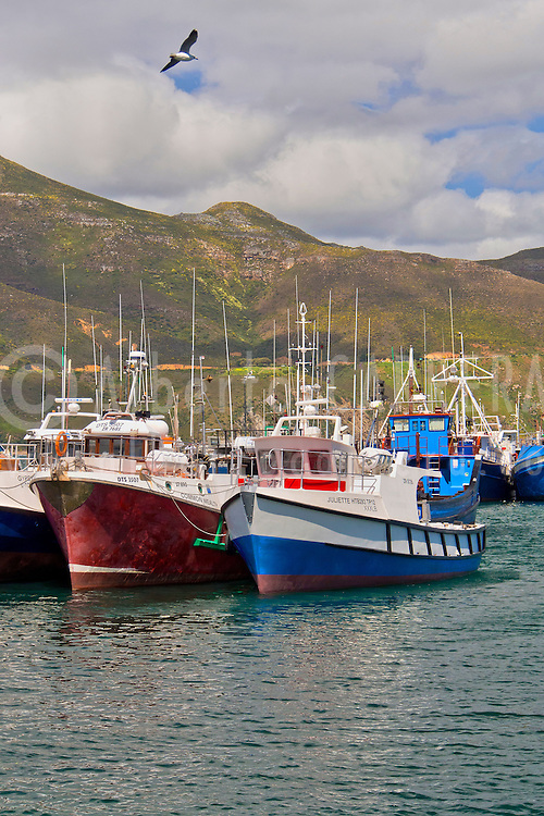 Alberto Carrera, Fishing Boats, Kalkbaai, Kalk Bay Harbour, False Bay, Cape Town, Western Cape, South Africa, Africa