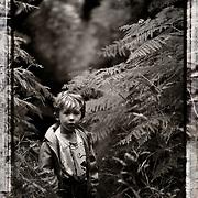 Enfant dans forêt de fougère