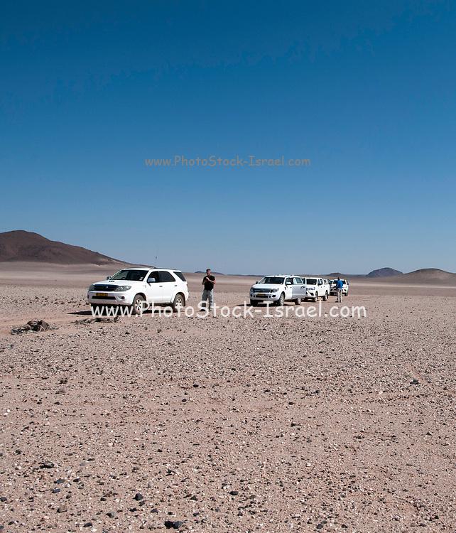 Harsh Namibian desert safari, Namibia