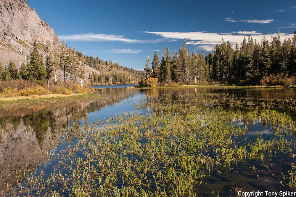 """Twin Lakes 1"" - A photograph of Twin Lakes, located in the Lakes Basin area of Mammoth Lakes, California"