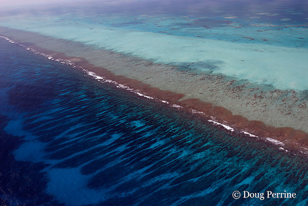aerial view of southern Belize Barrier Reef, off Placencia, Belize, Central America  ( Caribbean ) showing spur and groove coral formations