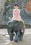 May 11, 2013: Oklahoma City Zoo