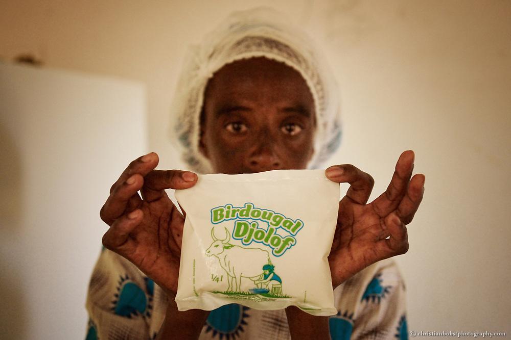 Yoghurt Fabrik zur Verwertung von Milch in THIARGNY, Senegal