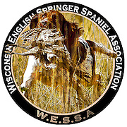 Wisconsin English Springer Spaniel Association, Hunt Test logo.  Photo illustration.