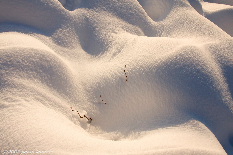 snow drifts in Vancouver, BC, Canada