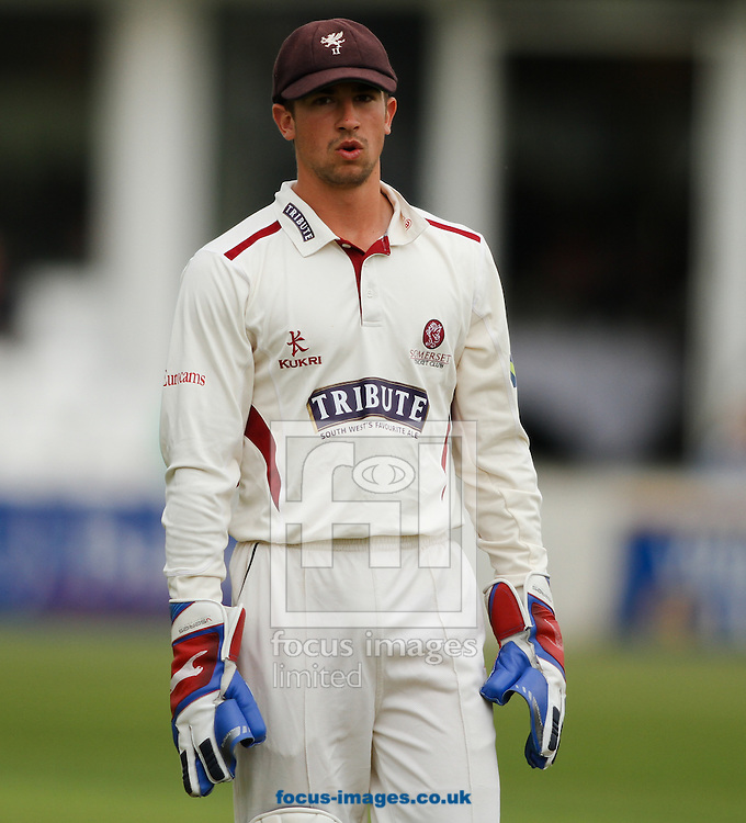 Picture by Tom Smith/Focus Images Ltd 07545141164<br /> 07/06/2013<br /> Alex Barrow of Somerset County Cricket Club during day two of the LV County Championship Div One match at the County Ground, Taunton, Taunton.