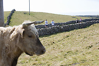 A weekend of glorious weather welcomed approximately 150 people from all over the country and abroad to Inis Mor , Arann Islands to participate in the annual Aer Arann half marathon.  Over the past ten years people have walked and ran the roads of Inis Mor to raise in excess of 1.2 million to purchase vital life saving equipment for sick children in both Crumlin and Temple Street hospitals. . Photo:Andrew Downes.