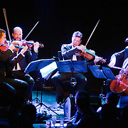 """January 8, 2012 - Manhattan, NY : The Calder Quartet comprised of, from left, Benjamin Jacobson (violin), Andrew Bulbrook (violin), Jonathan Moerschel (viola), and Eric Byers (cello) perform Terry Riley's """"Cadenza On The Night Plain"""" at Le Poisson Rouge in Manhattan on Sunday evening.  CREDIT: Karsten Moran for The New York Times"""
