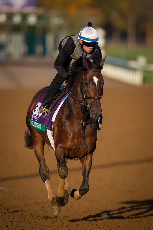 October 29, 2015:  Slumber (GB), trained by Chad C. Brown and owned by Michael Dubb , Sheep Pond Partners & Bethlehem Stables, exercises in preparation for the Longines Breeders' Cup Turf at Keeneland Race Track in Lexington, Kentucky. Alex Evers/ESW/CSM