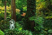 Sanzen In gardens, Kyoto, Honshu, Japan