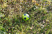 green leather football laying in the grass