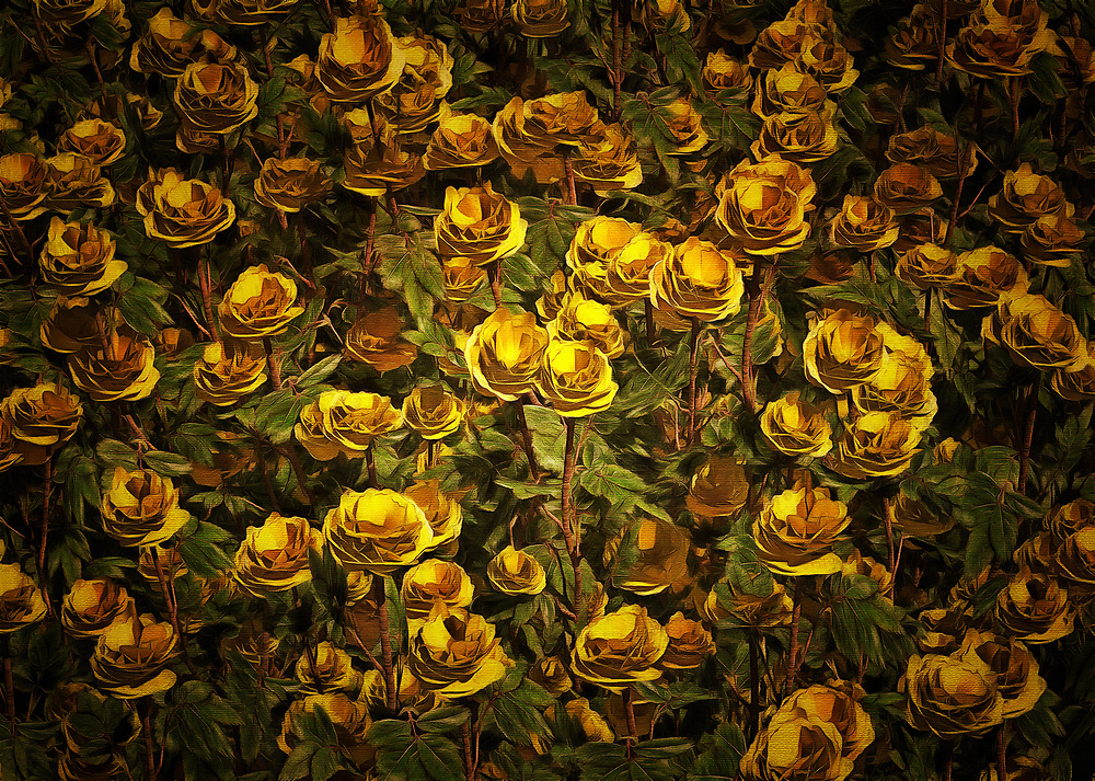 The color yellow has the capacity to warm your heart. It can remind you of the best things in life. It can make you think about the sun. It can make you think about life. When you combine the color yellow with roses, you have something that is truly special. Roses mean so many different things to so many different people. When you combine those feelings with everything one associates with the color yellow, you are left with something that is certain to stir your very best feelings and memories. This fine art piece can make for a charming addition to personal or professional spaces. .<br />