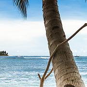Walkabout 5DMKII at Kandui, Kandui, Mentawais Islands, Indonesia March  26, 2013.