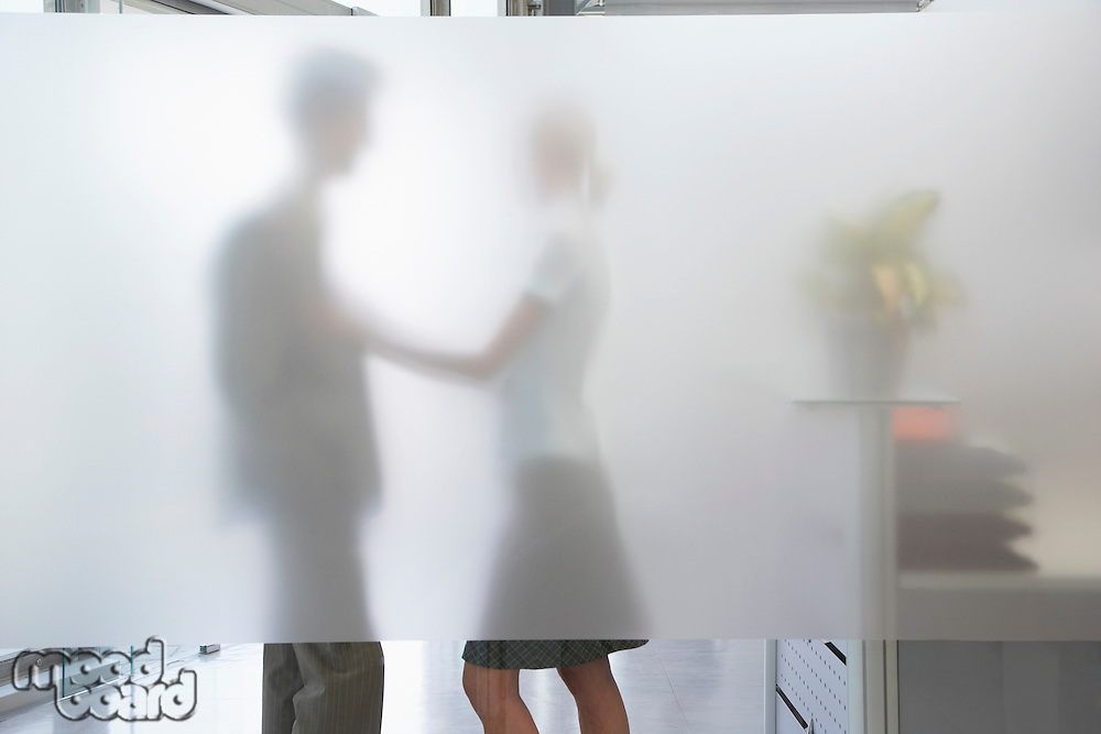 Female office worker touching male colleague behind translucent wall in office