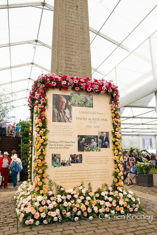 A memorial to the late David Austin Snr. in the Great Pavilion at the RHS Chelsea Flower Show 2019, London, UK