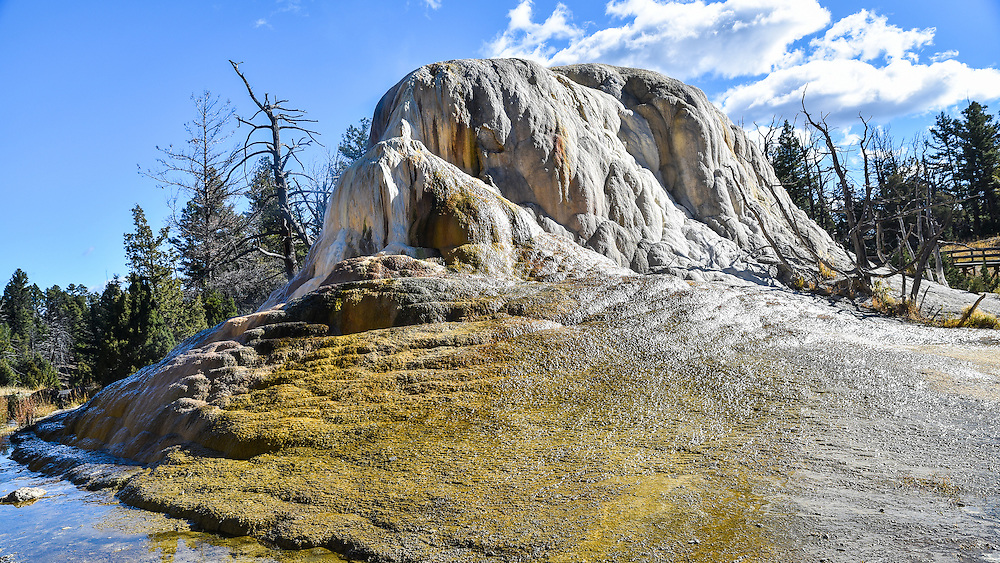 The thermal cone of Orange Spring Mound, Yellowstone