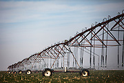 A center pivot irrigation system waters a freshly planted wheat field on Mitchell Baalman's 12,000-acre farm outside of Hoxie, Kan., on Thursday, Oct. 11, 2012. As historically dry conditions continue, farmers from South Dakota to the Texas panhandle rely on the Ogallala Aquifer, the largest underground aquifer in the United States, to irrigate crops. After decades of use, the falling water level ? accelerated by historic drought conditions over the last two years ? is putting pressure on farmers to ease usage or risk becoming the last generation to grow crops on the land. Farmers like Mitchell Baalman and Brett Oelke (both not pictured), are part of a farming community in in Sheridan County, Kansas, an agricultural hub in western Kansas, who have agreed to cut back on water use for crop irrigation so that their children and future generations can continue to farm and sustain themselves on the High Plains.