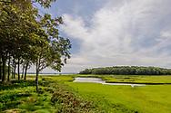 Marsh, Sag Harbor Bay,  Sag Harbor, NY, Long Island