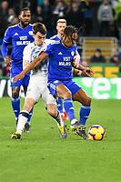 Football - 2018 / 2019 Premier League - Cardiff City vs. Everton<br /> <br /> Bobby Reid of Cardiff City & Seamus Coleman of Everton, at Cardiff City Stadium.<br /> <br /> COLORSPORT/WINSTON BYNORTH