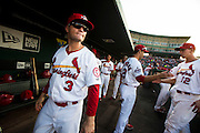 James Ramsey (3) of the Springfield Cardinals looks out to the field prior to a game against the Northwest Arkansas Naturals at Hammons Field on August 23, 2013 in Springfield, Missouri. (David Welker)