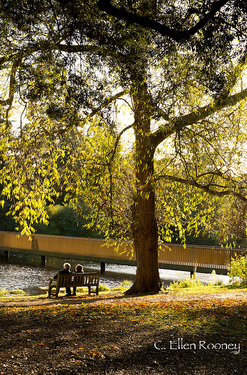 A couple sitting on a bench next to the Sackler Crossing on an autumn day in Kew Gardens, London, UK