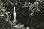 Afu Aau Waterfalls, Vailoa i Palauli, Savai'i, Samoa.