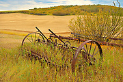 Tractor and old farm implements on homestead<br />