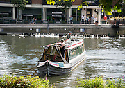 © Licensed to London News Pictures. 17/07/2014. Kingston Upon Thames, UK. A couple manoeuvre a narrow boat.  People and animals in the sunny hot weather on the banks of the River Thames at Kingston Upon Thames today 17th July 2014. Photo credit : Stephen Simpson/LNP